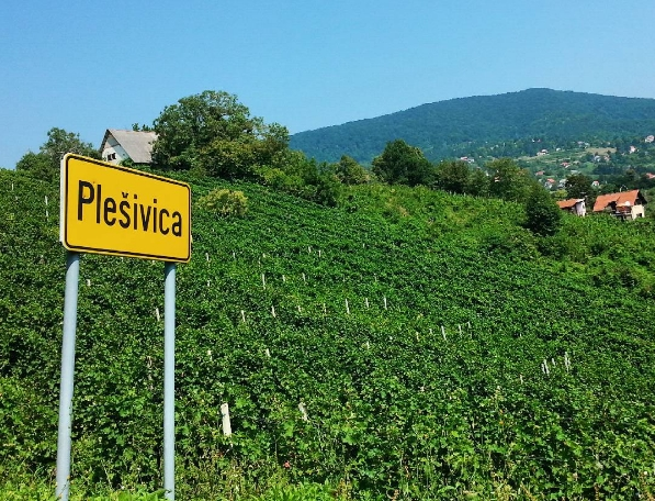 Plešivica – sparkling delight